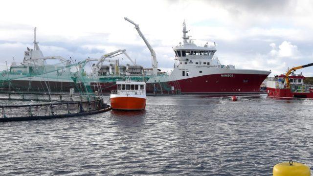 Kystrederiene fisketransport pilotprosjekt